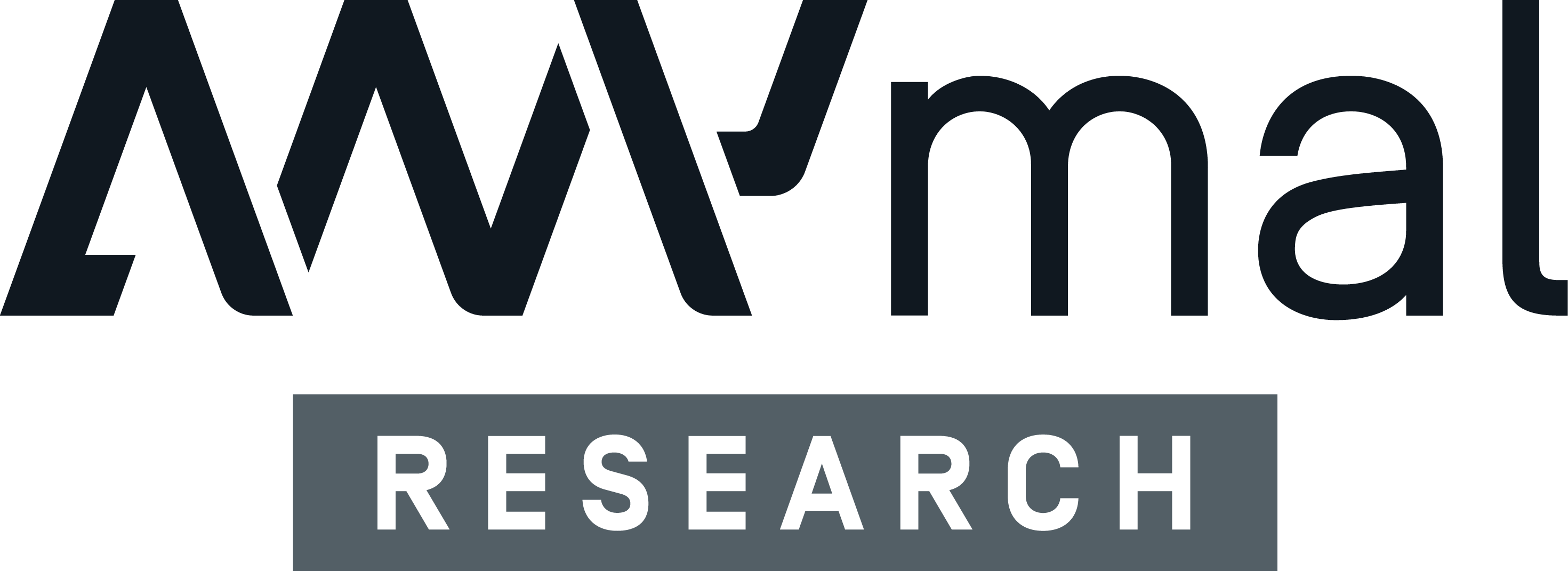 ANYmal Research